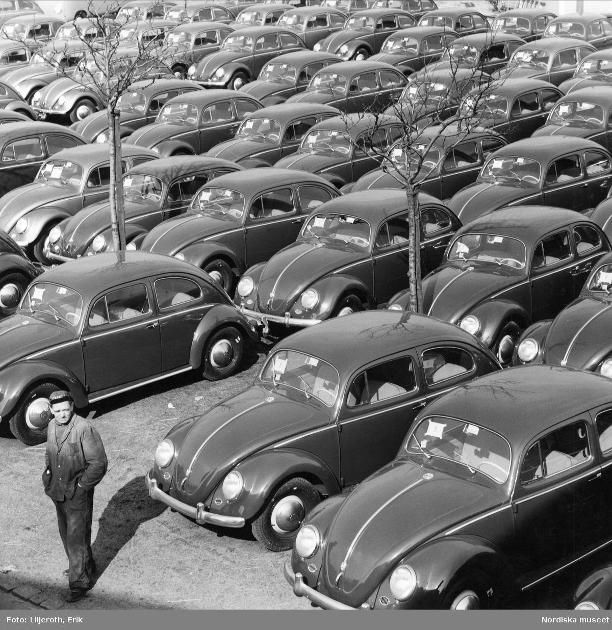 Importerade Volkswagen i Malmö hamn