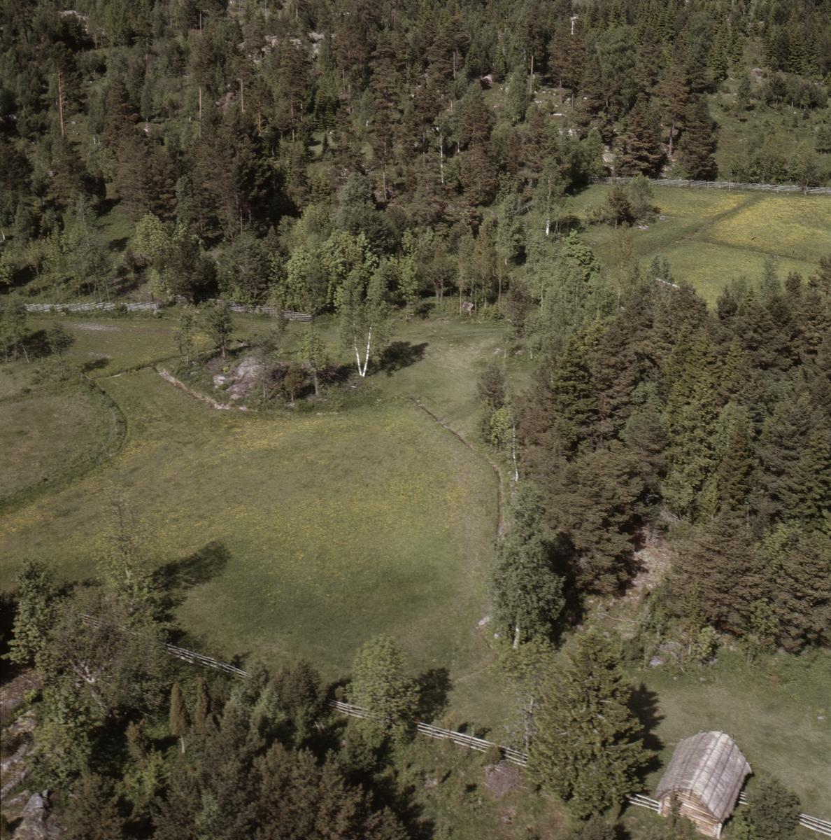 Vy över Söderboda, Gräsö socken, Uppland, juni 1989