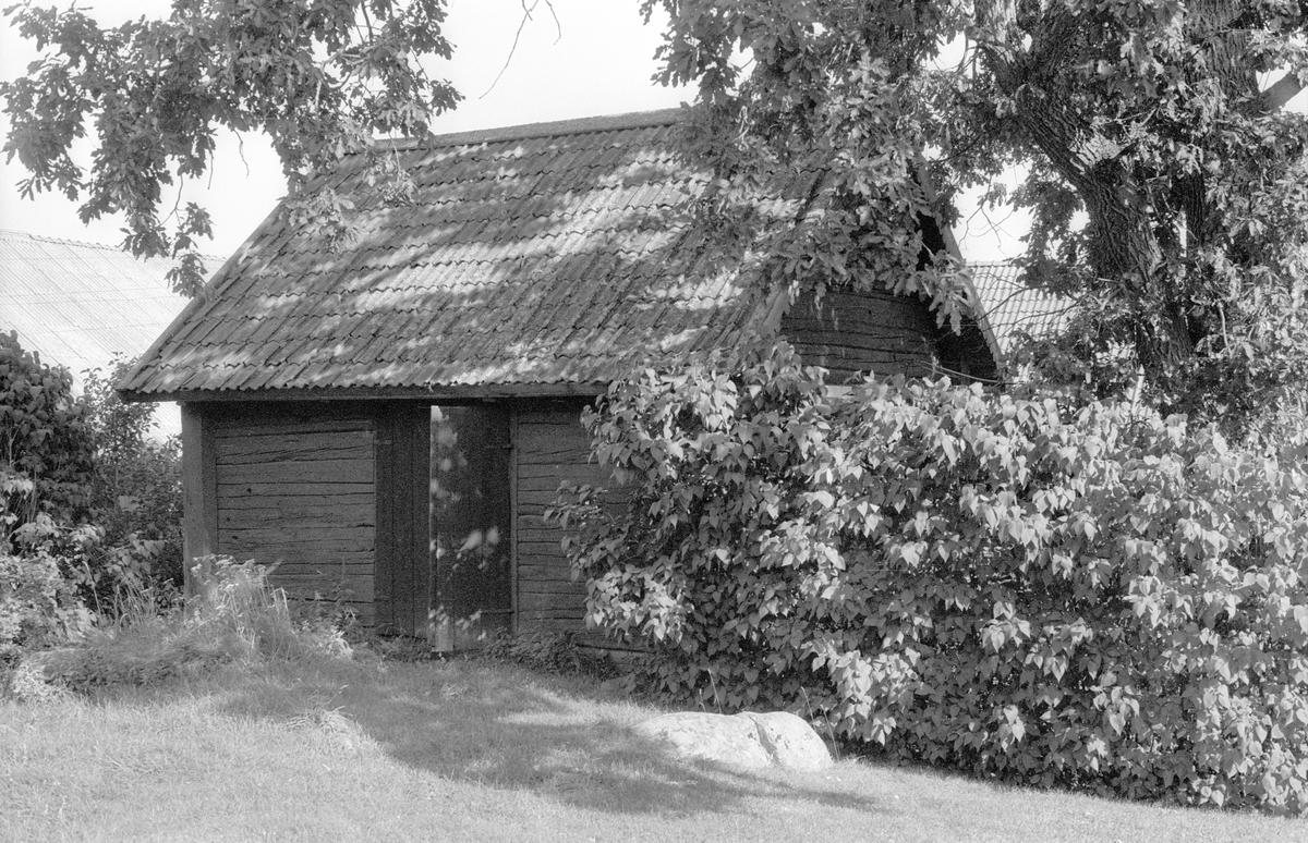 Källarbod, Jumkils-Ubby 1:13, Ubby, Jumkils socken, Uppland 1983