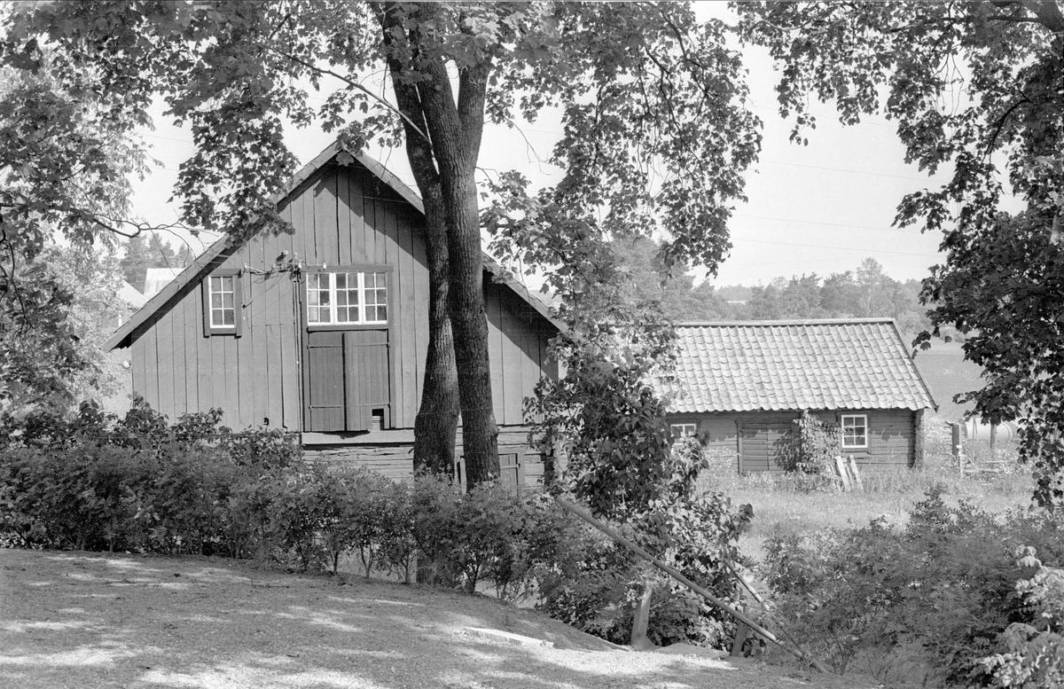 Magasin och svinhus, Berga 1:1 och 1:2, Berga, Danmarks socken, Uppland 1977