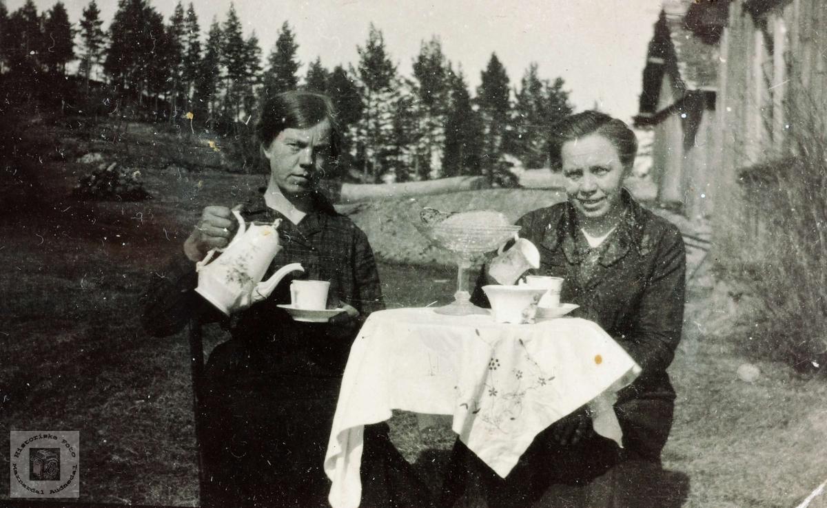 Kaffekos i sommervarmen, Hestebakken Smedsland i Grindheim.