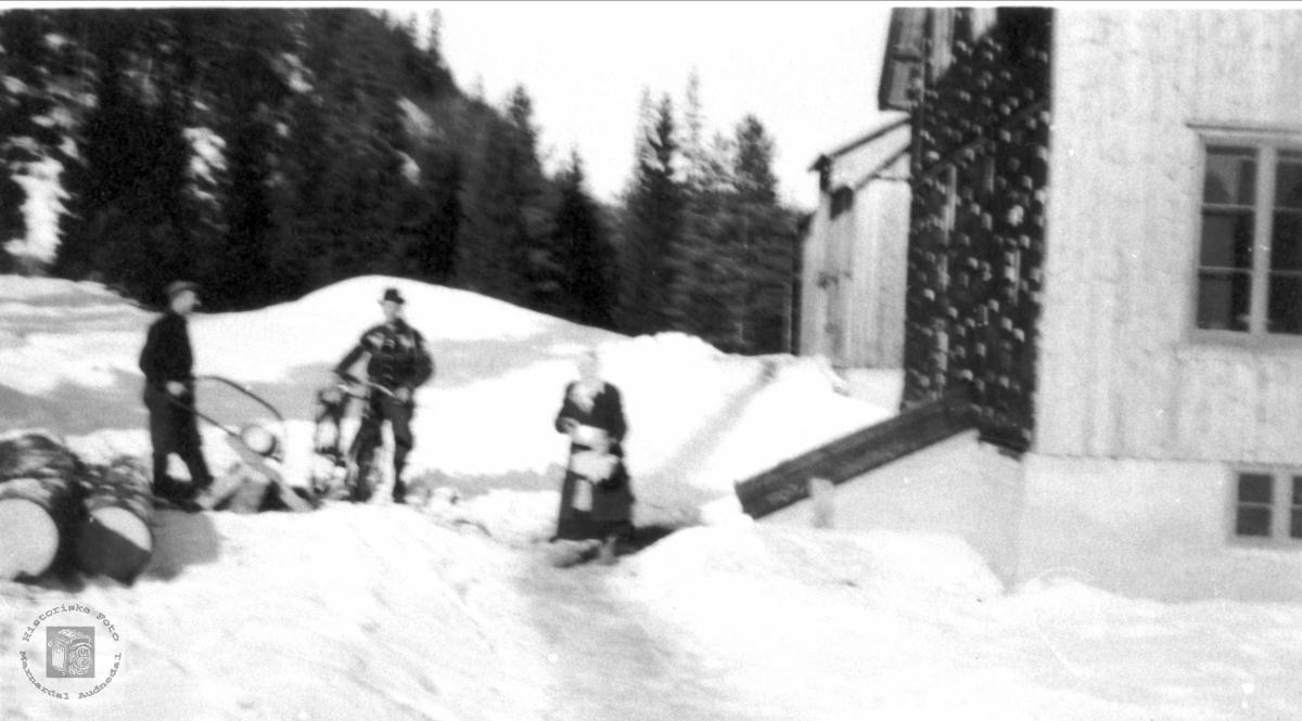 Vinter på Bergan, Bjelland.