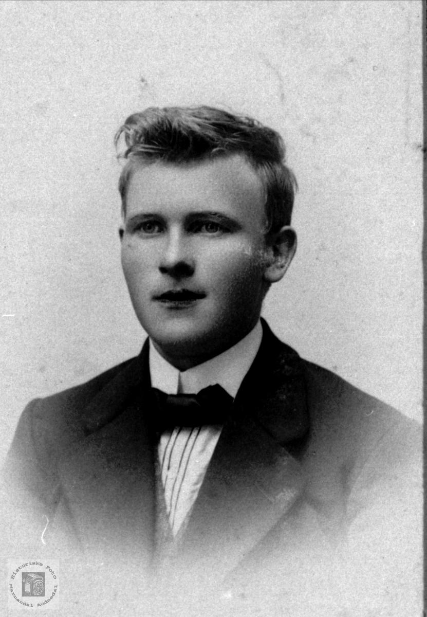 Portrett av Torgny Skjeggestad, Bjelland.