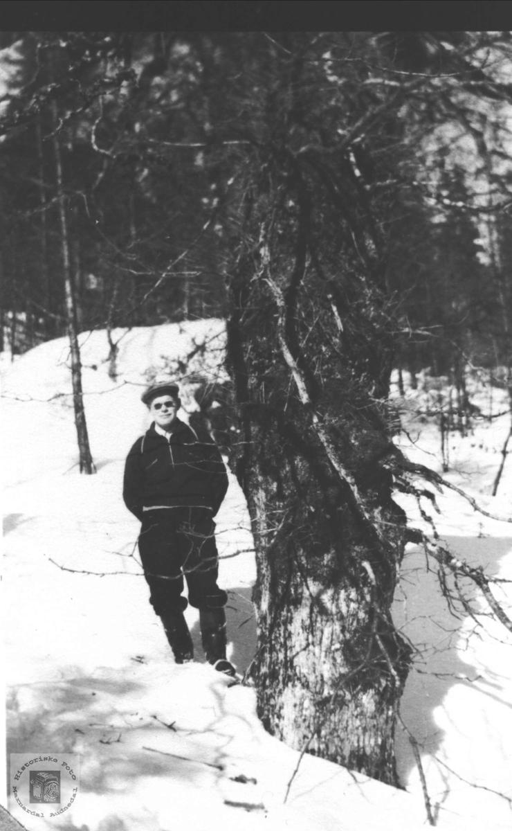 I eikeskog, Tobias Kvasshammer, Øyslebø.