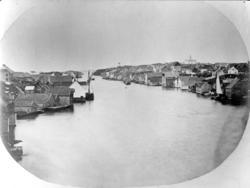 Haugesund havn, sett fra Trosnaberg på Risøy 1860. Det eldst