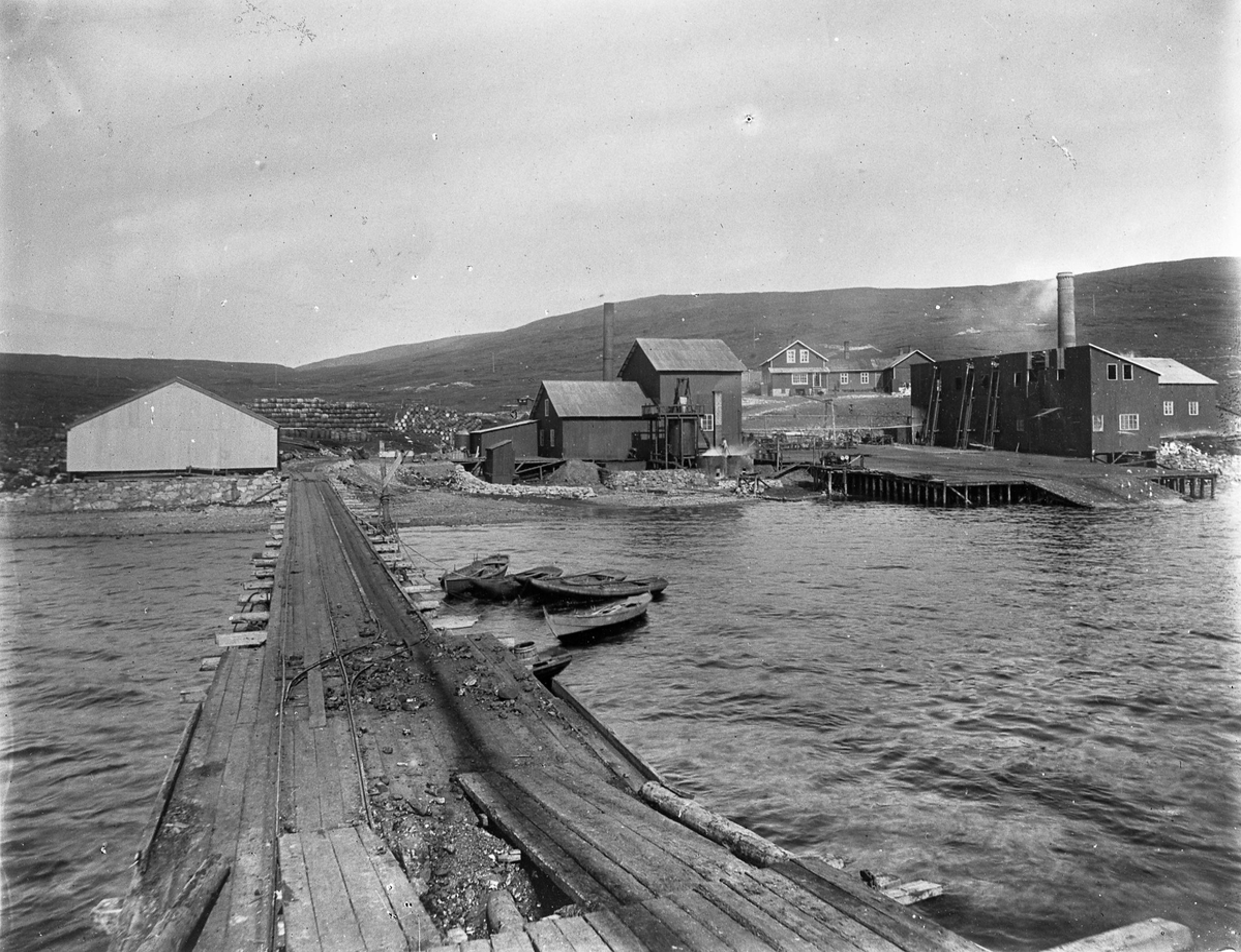 Hvalfangst, fangststasjon Spitsbergen, sommeren 1906