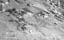 Stockevik 1952