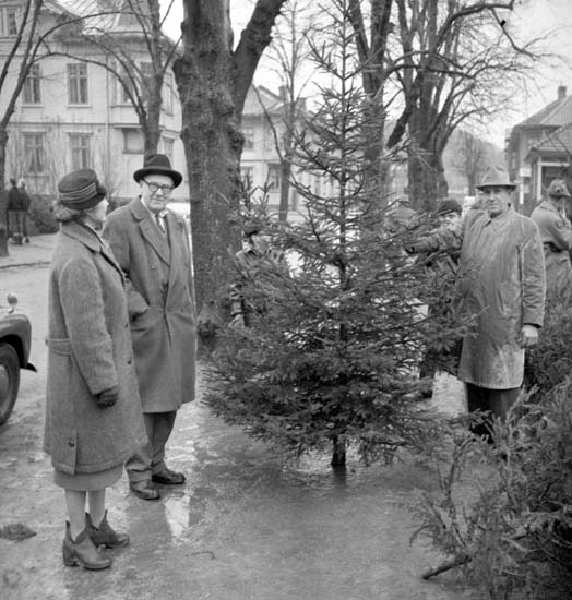 """Enligt notering: """"Julgranskommers d 22/12 -58""""."""