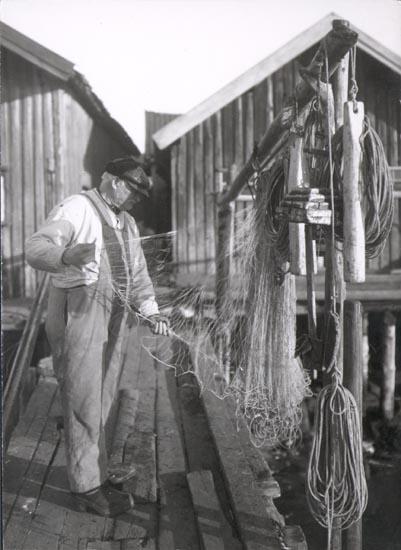 """Notering på kortet: """"Gravarne"""".  """"FOTO (C61) DAN SAMUELSON 1924. KÖPT AV DENS. DEC. 1958""""."""