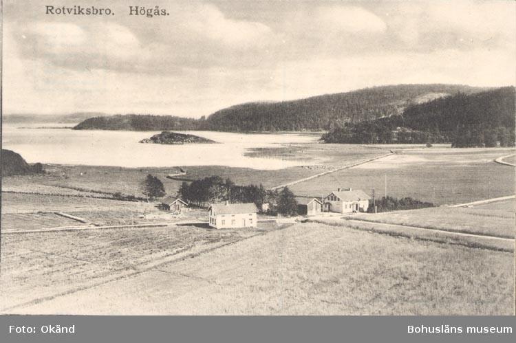 """Tryckt text på kortet: """"Rotviksbro. Högås"""".  ::"""