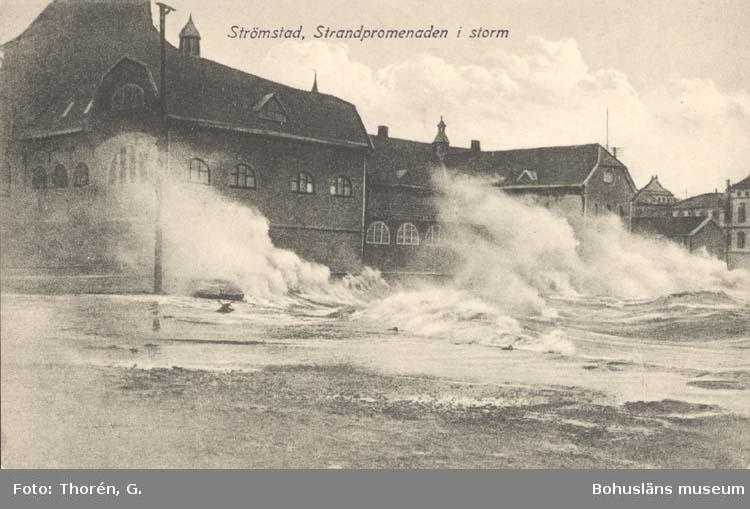 """Tryckt text på kortet: """"Strömstad. Strandpromenaden i storm.""""  """"Förlag: Larssons Bokhandel, Strömstad."""""""