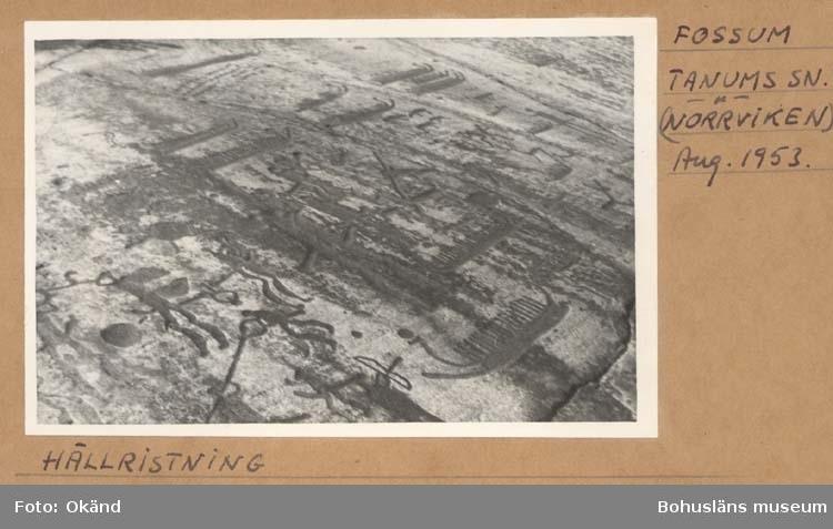 """Noterat på kortet: """"Fossum Tanums Sn. (Norrviken)"""". """"Aug. 1953."""" """"Hällristning."""""""