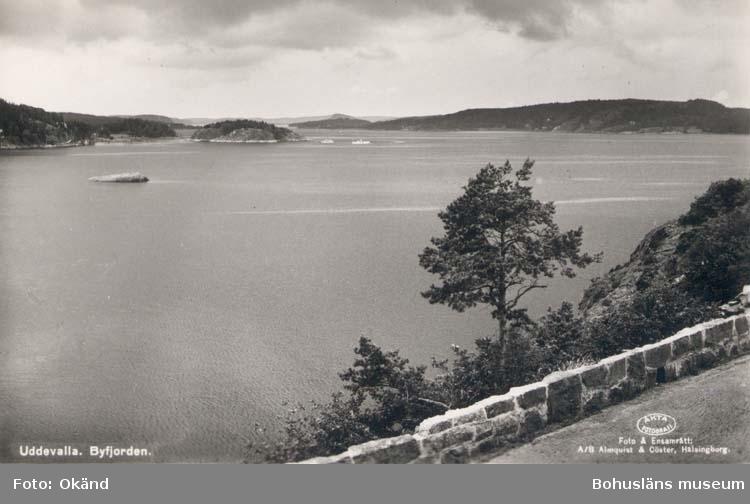 """Tryckt text på kortet: """"Uddevalla. Byfjorden."""" """"Foto & Ensamrätt: Almqvist & Cöster, Hälsingborg. """""""