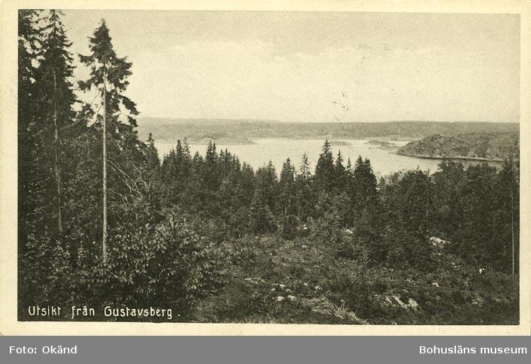 """Tryckt text på vykortets framsida: """"Utsikt från Gustavsberg.""""  ::"""