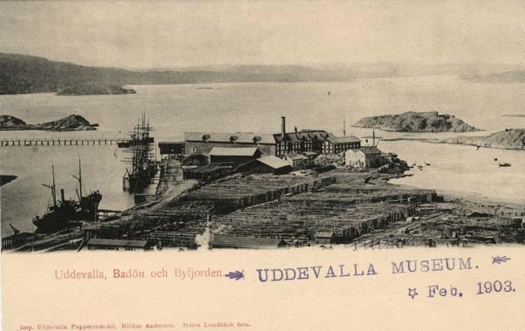 """Tryckt text på vykortets framsida: """"Uddevalla Badön och Byfjorden."""""""