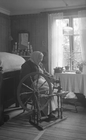 """Enligt fotografens noteringar: """"Taget 1934. Mor Lena, Kärnbacken Kvistrum Munkedal. akt (?) Plåt skall förstoras till Munkedals Museum. 1 st. 24x30 på matt plåt elfenbensf. papper."""""""