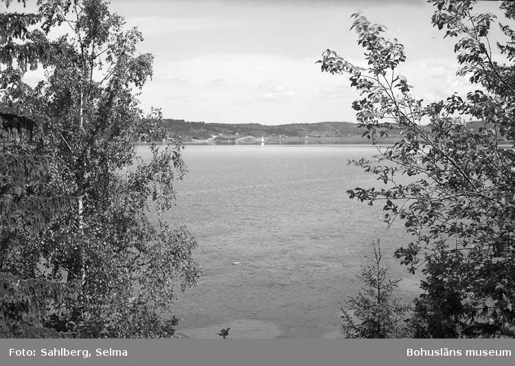 """Enligt fotografens noteringar: """"Motiv i Högås Bohuslän""""."""