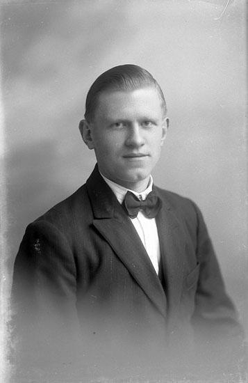 "Enligt fotografens journal nr 1 1904-1908: ""Forsell Operasångare Stenungsön""."
