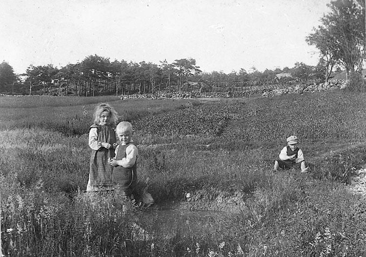 "Enligt fotografens journal nr 6 1930-1943: ""Karlsson, Fru Ragnhild Almesund Hjälteby""."