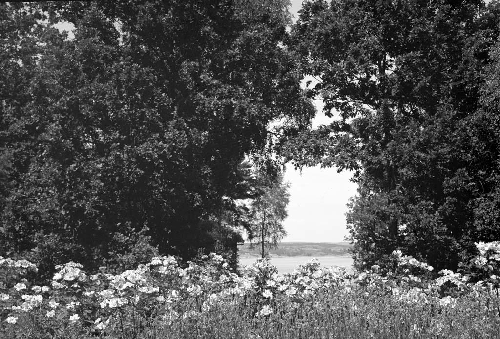"""Enligt fotografen: """"D. 13 juli 1935 Konsulinnan Aspegren Solbacka Stenungsön"""". Uppgifter från givaren: Utsikt över Askeröfjorden"""