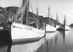Fiskebåtar i Rönnäng 1949