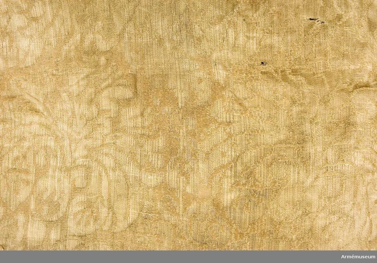 Duk: Tillverkad av enkel gul(?) sidendamast, sydd av två våder. Tvåtungad. Kantad med enkel orange silkesfrans. Fäst vid stången med en rad tennlickor på ett gult band.  Dekor: Målat omvänt lika på båda sidor, Skånes sköldemärke, ett griphuvud i brunt. Krönt med öppen krona i silver.  Stång: Tillverkad av gråmålad furu. Kannelerad ovanför greppet. Nedanför slät. Löpande bärring, beslagen med tre järnskenor. Holk av förgylld mässing. Spets av förgylld mässing, lansettformad. Fäst med tre tennlickor.
