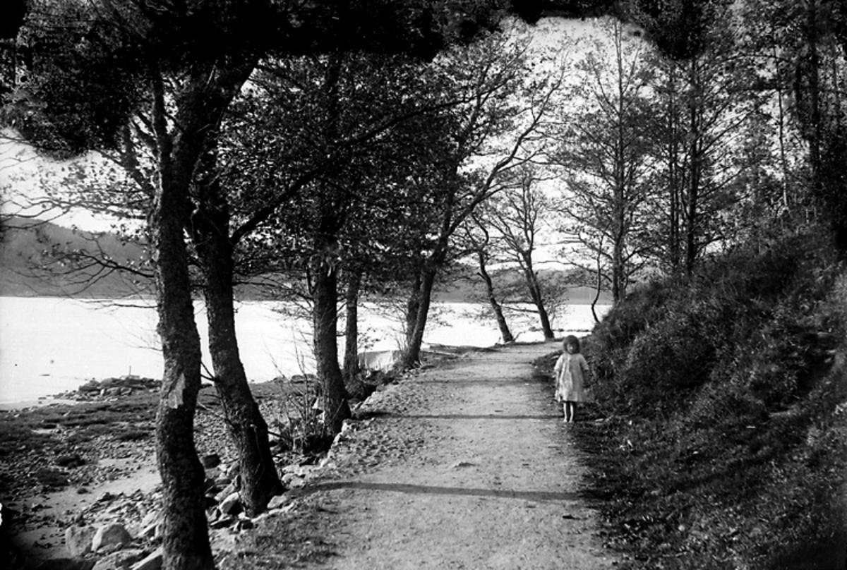 Strandvägen, Ljungskile.