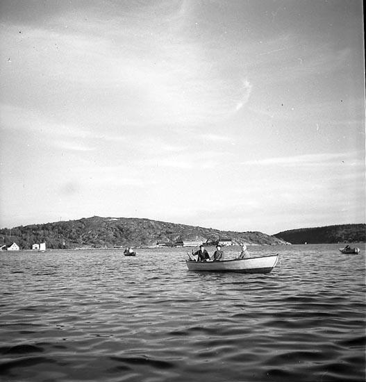 Dörjfiskande båtar