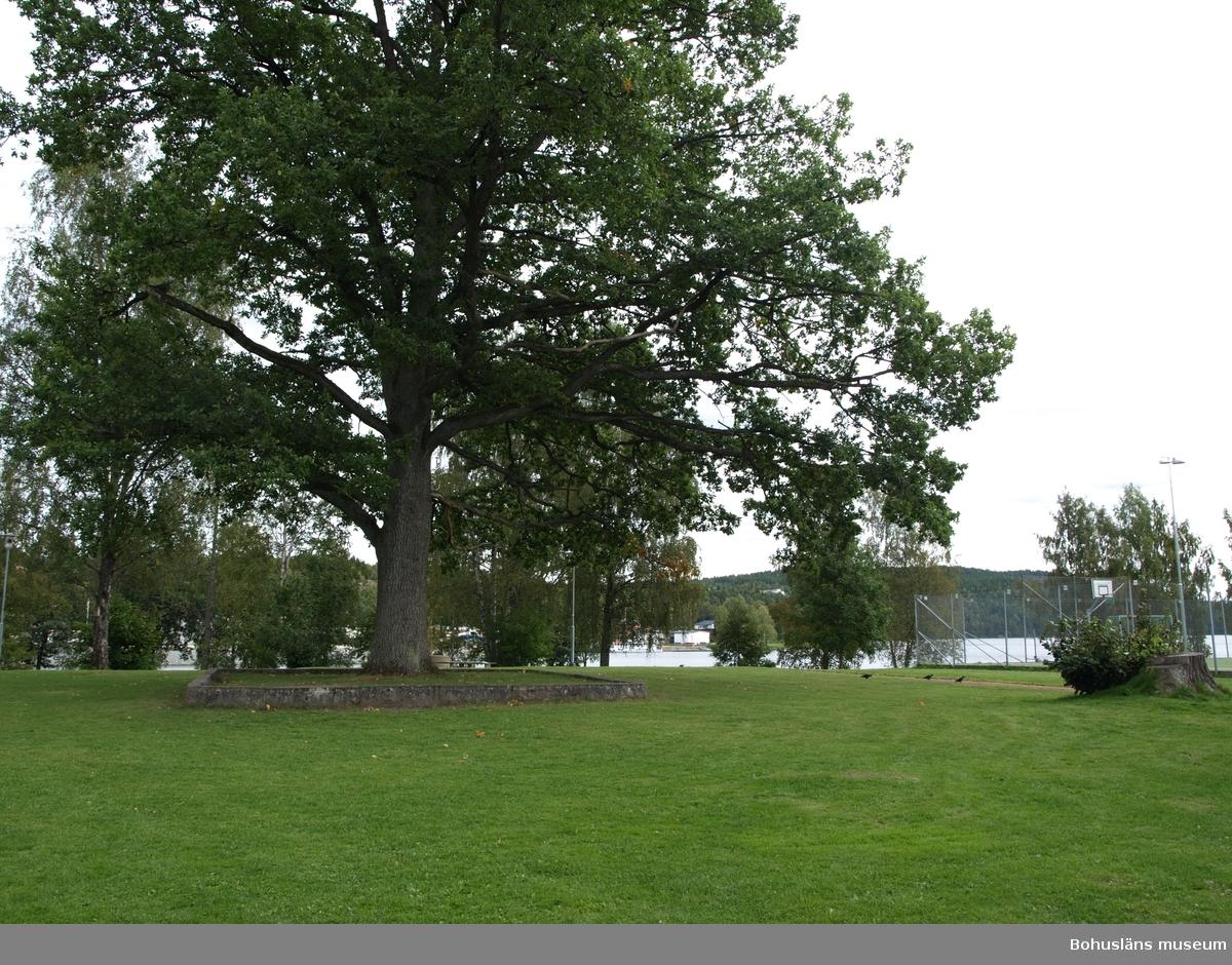 Vid Bengtsfors Västra station låg den så kallade Järnvägsparken. I denna park fanns en tältplats som användes av olika resandesläkter.  Ved den vestre stasjonen i Bengtsfors lå den såkalte jernbaneparken. I denne parken fantes det en teltplass som ble brukt av ulike reisendefamilier.