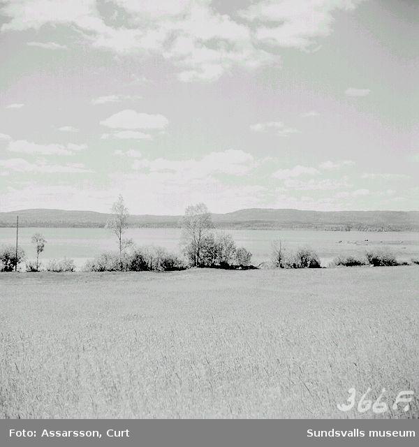 Utsikt över Bysjön, Haverö, fr. By:  A) med Nipen, 516 m.ö.h. i bakgrunden  B) med Skinntikåsen i bakgrunden,(negativ saknas)
