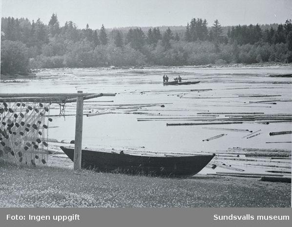 Fiske på Ljungan.I vattnet flyter timmerstockar.
