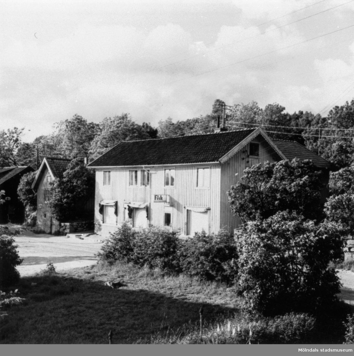 Gamla huset bakom sjukkassan. Fisk, charkuteriaffär i Annestorp, 1951.