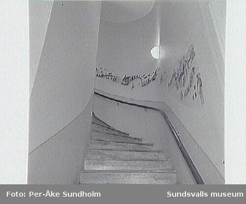 SuM-foto013477