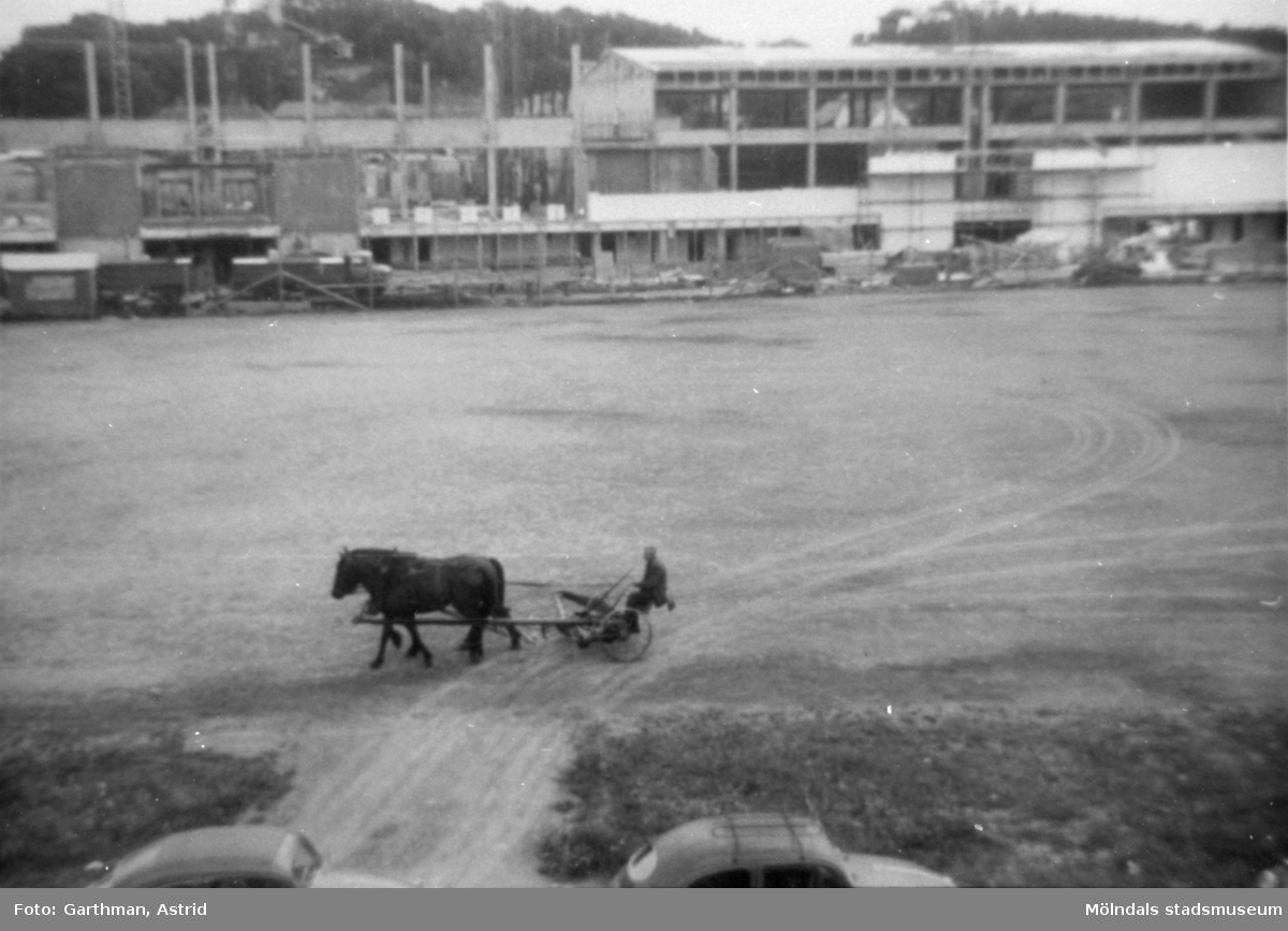 Idrottshuset (nuvarande Aktiviteten) under uppbyggnad. Stod färdigt 1965. Hästar med slåttermaskin passerar på Frejaplan.
