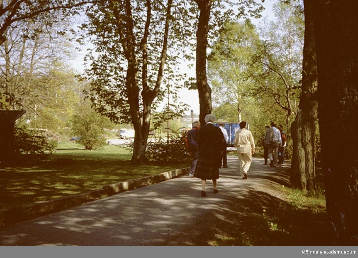 """Samrådsgruppen promenerar i """"Övre Kvarnbyn"""" (Bettyholm mm) 1994-05-09. Relaterade motiv: 2003_0441 - 0458."""