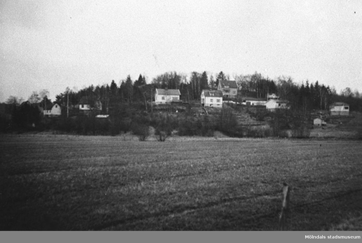 Torrekulla bostadsområde i Kållered, 1949. Kortet är taget ifrån Alveredsdalen mot Torrekulla. Åkermarken hör till bönderna i Alvered.