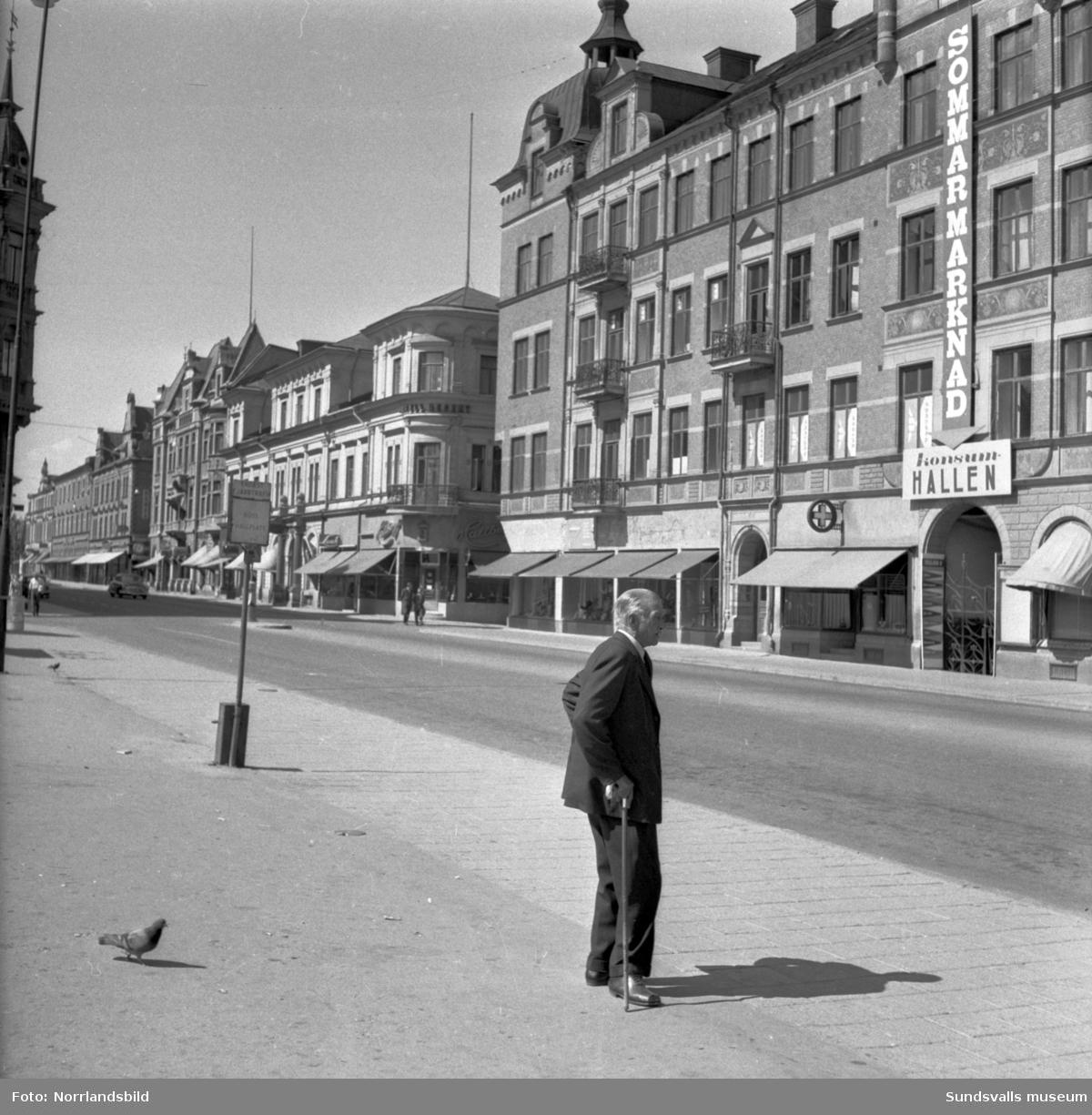 Stora torget i Sundsvall är söndagstomt i värmeböljan. En äldre herre med käpp är ensam med duvorna.