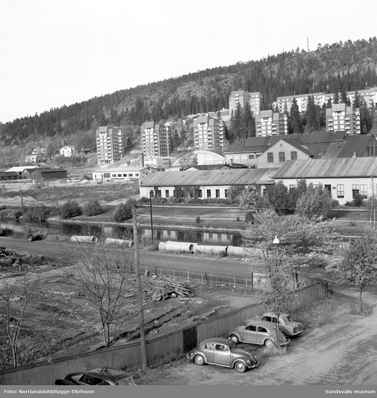 Alliero mot Norra berget, fotograferat från det så kallade Sprickhuset.