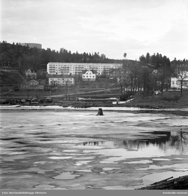 Nya Ortvikenhusen vid Tjädervägen i Skönsberg. Vattentornet syns i bakgrunden.