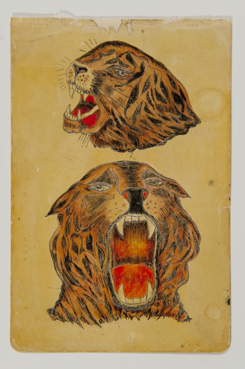 """Tatueringsförlaga. Två olika motiv. 1. Ett rytande tigerhuvud i halvprofil. 2. Ett rytande tigerhuvud en face.  """"Tigern kan visualiser det exotiska. Kanske ville bäraren låna lite av egenskaperna hos det här djuret. Det kan vara ett alter ego. Tigern kan symboliser kraft, gnista och kämpaglöd, men också rovlystnad och passion. Det kan också uttrycka kärlek till naturen.""""  Text från appen """"Tatuera dig med Sjöhistoriska"""" som gjordes i samband med utställningen Tro, hopp och kärlek 2012."""