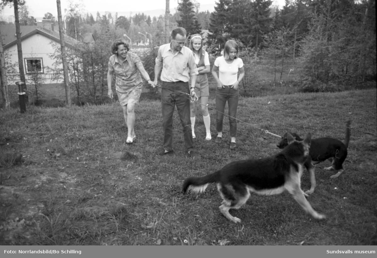 Skandia-reportage för Expressen. Två familjer (Skandia-anställda?) i hemmiljö med barn och hundar.