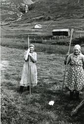 Prestegardshusstølen i stølsområdet Løkenstølane . Frå vens
