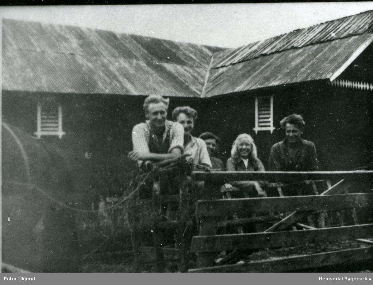 Tre brør Aalrust i slåtten, Endre, Lars og Olav - pluss nokre byungar. Fotografiet er teke i 1940.