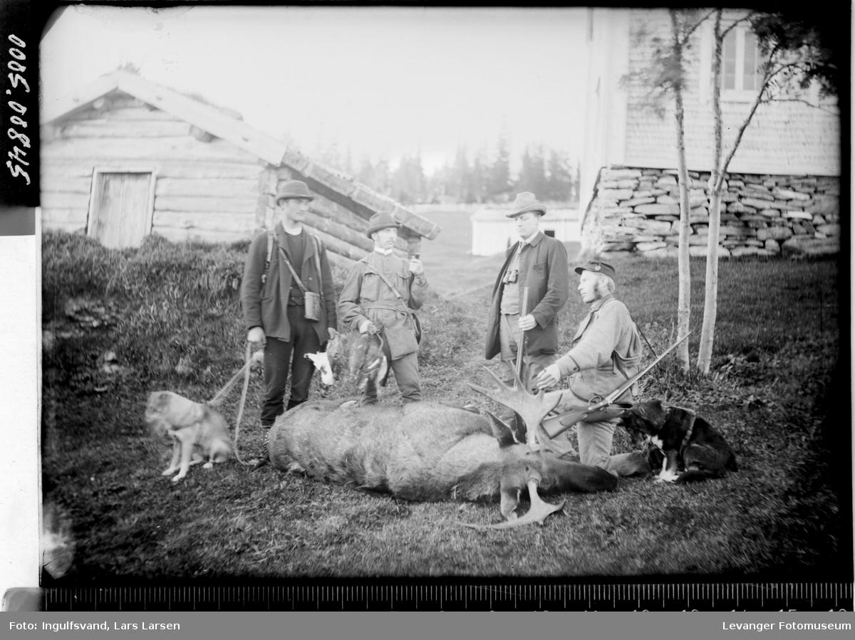 Et jaktlag på fire menn med en felt elg.