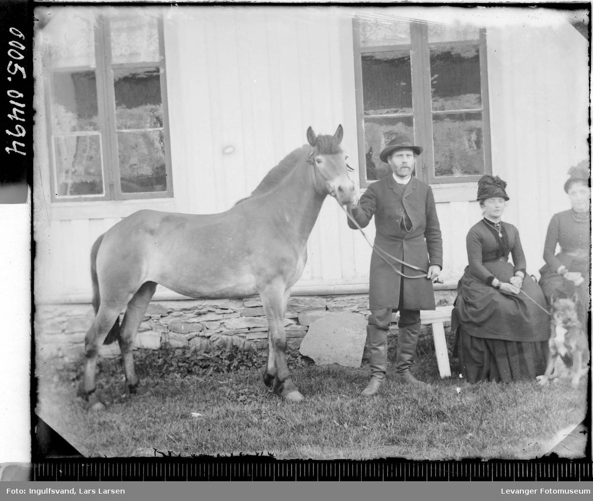 Portrett av to kvinner og en mann med en hest.