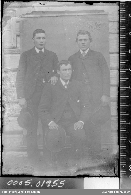 Portrett av tre brødre.