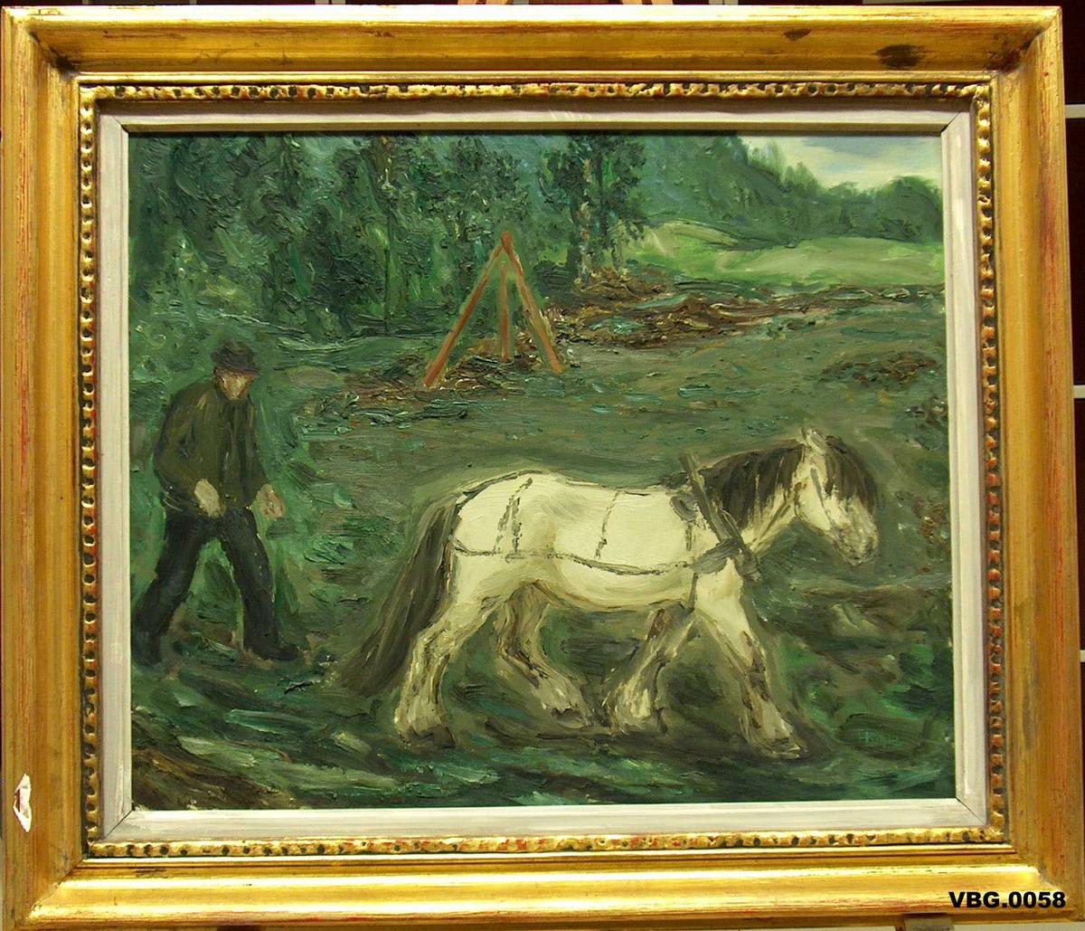 I framgrunnen hest med mann gåande bak. Stubbebrytar i bakgrunnen