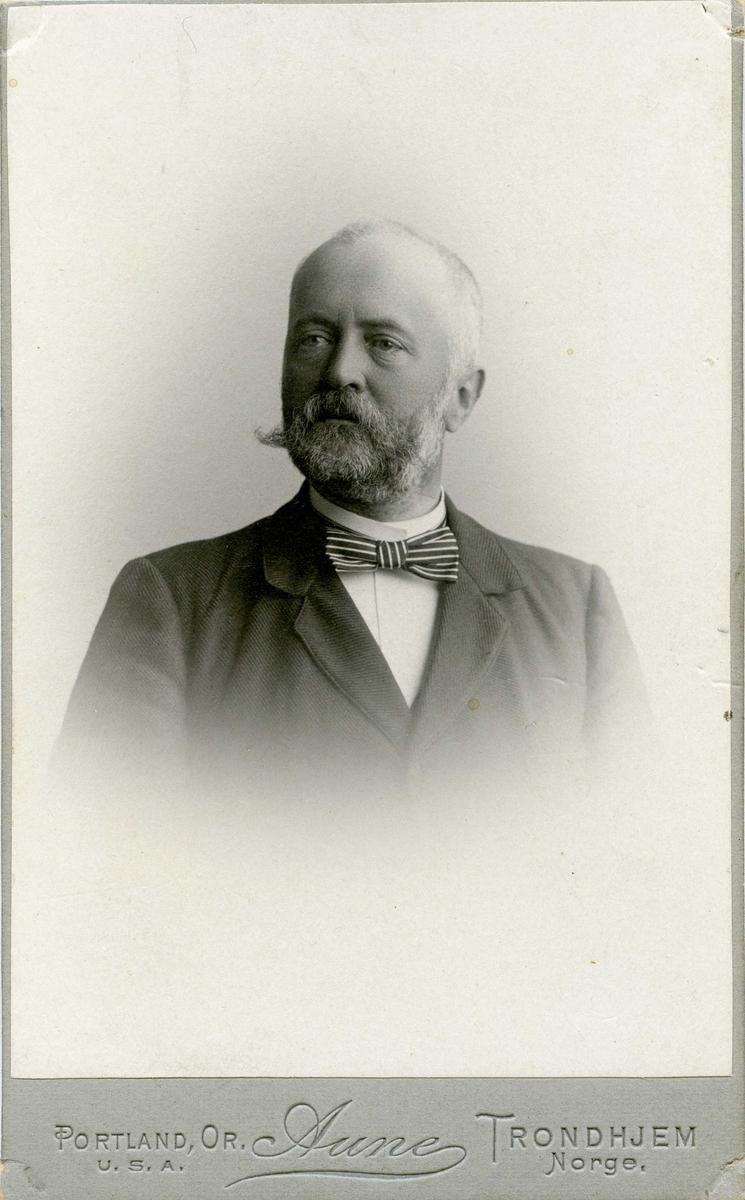 Portrett - Herre med skjegg
