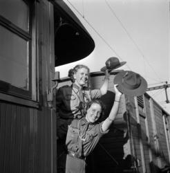 Scouter från Medelpad åker iväg på - och kommer hem ifrån -