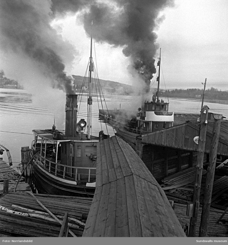 En serie bilder från branden som ödelade Alviks sågverk på Alnö 1950.